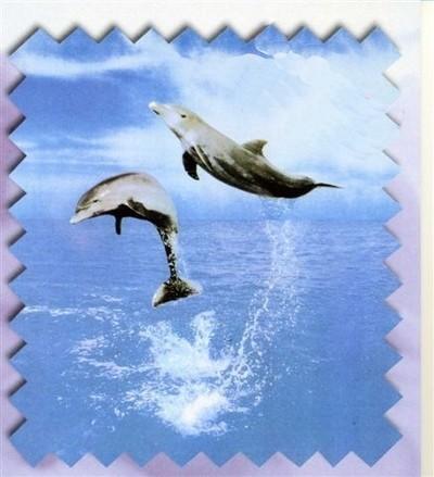 Sacco Piumino Letto Singolo Una Piazza Delfini Mare Federa Bottoni Cot