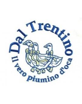 2 VERI Piumini Oca Bianco Trentino 4 stagioni letto una piazza e mezza piuma Piumino