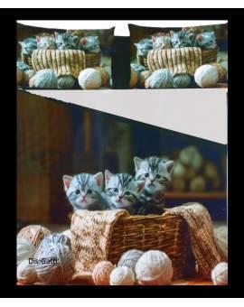 Parure Copripiumino sacco letto una piazza e mezza microfibra gattini mici